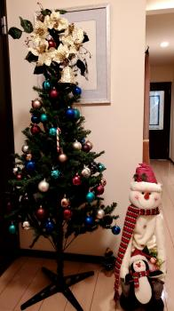 クリスマスの準備出来ました♬